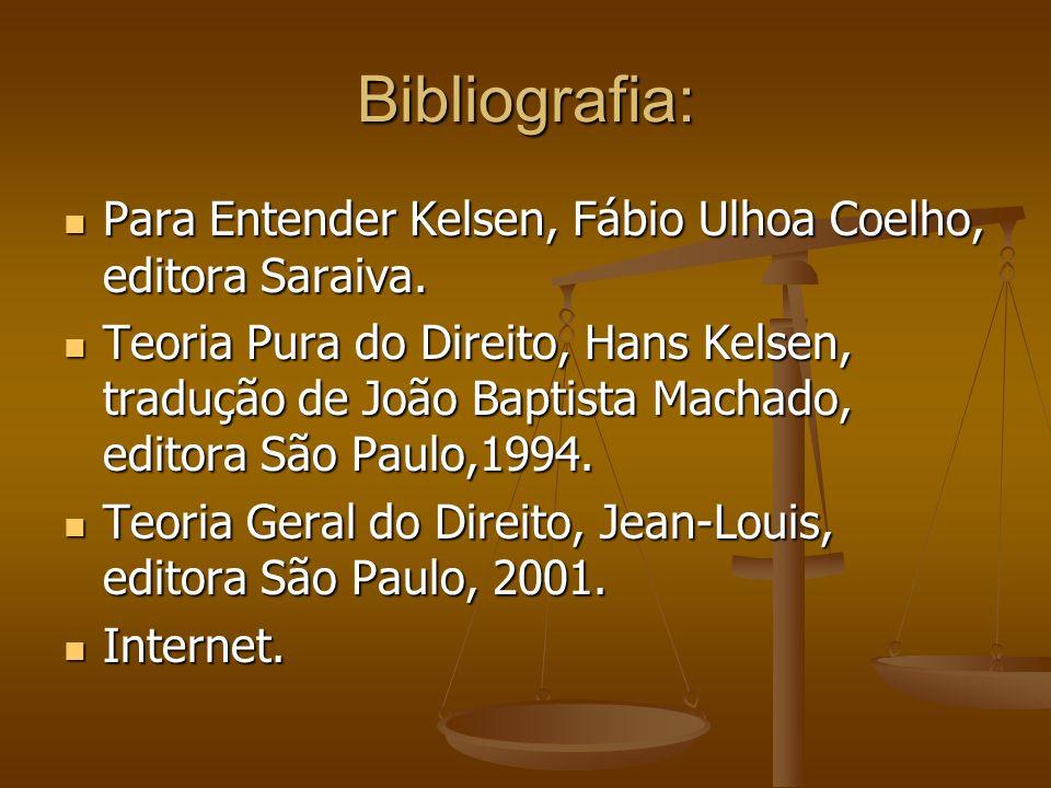 Bibliografia:Para Entender Kelsen, Fábio Ulhoa Coelho, editora Saraiva.