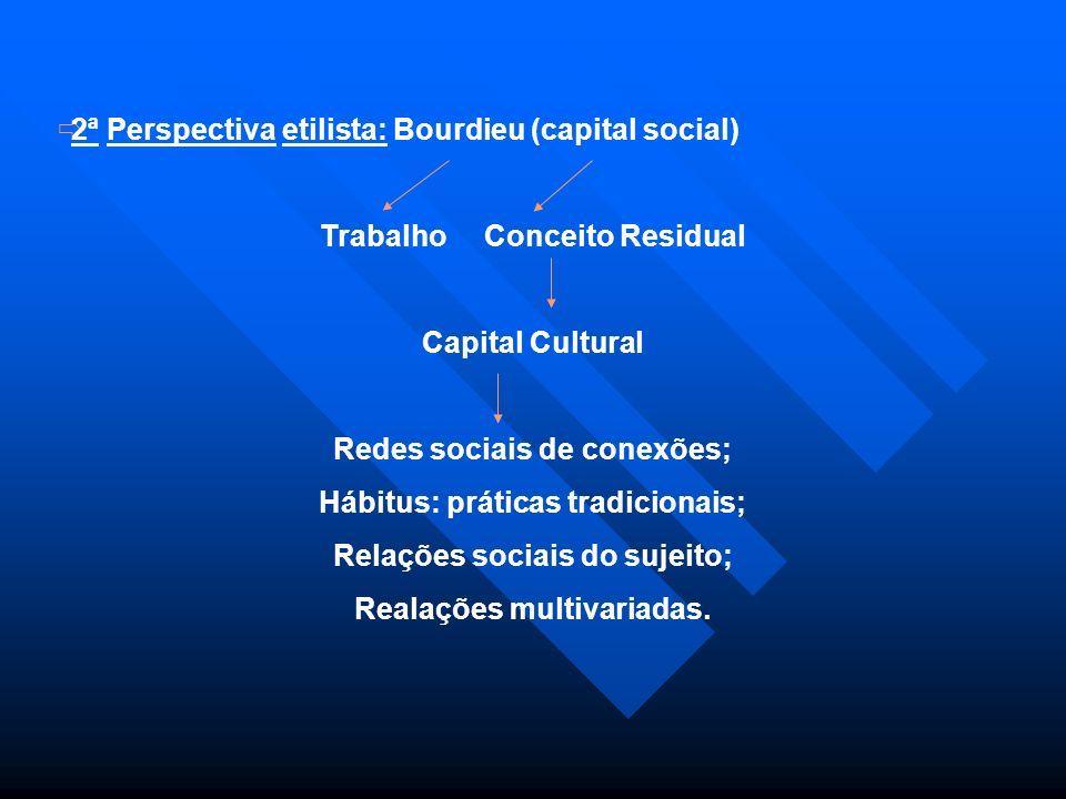 2ª Perspectiva etilista: Bourdieu (capital social)