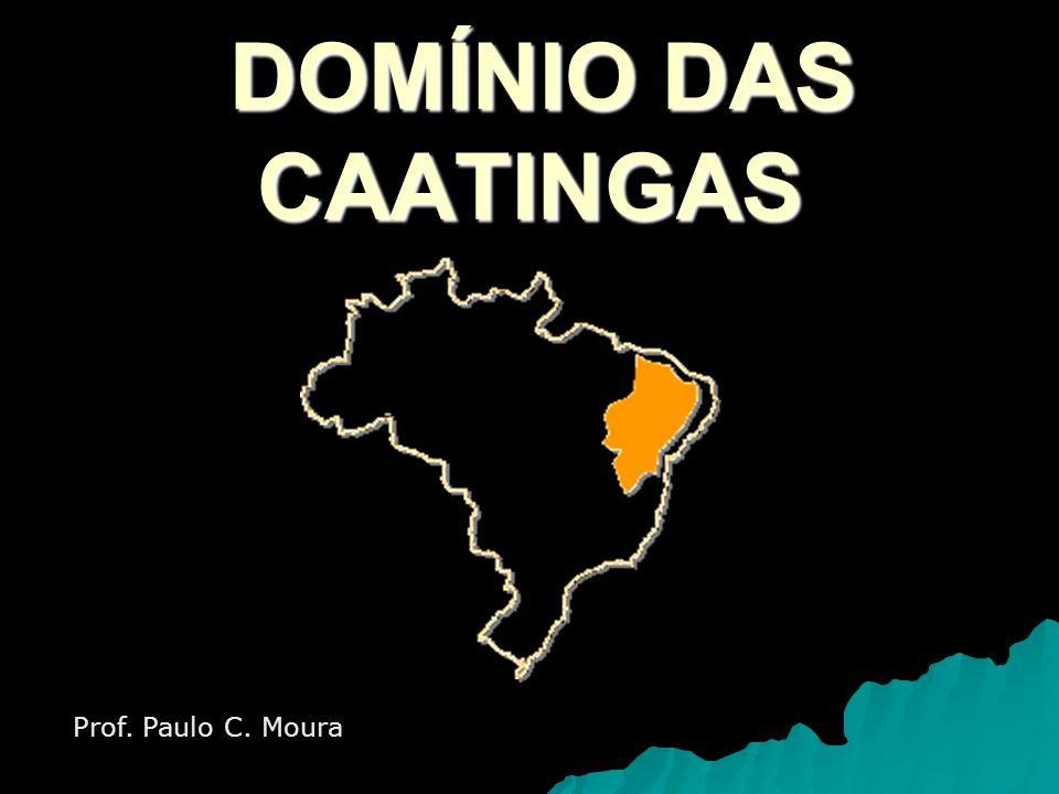 DOMÍNIO DAS CAATINGAS Prof. Paulo C. Moura