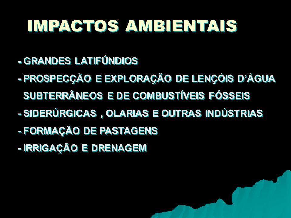 IMPACTOS AMBIENTAIS - GRANDES LATIFÚNDIOS