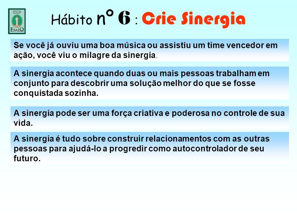 Hábito nº 6 : Crie Sinergia