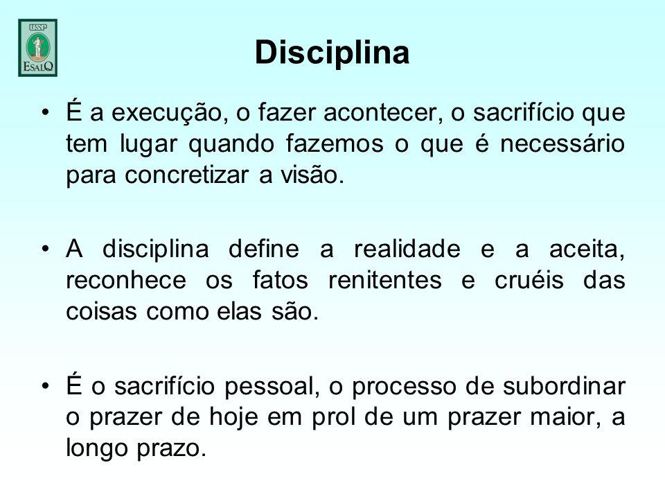 Disciplina É a execução, o fazer acontecer, o sacrifício que tem lugar quando fazemos o que é necessário para concretizar a visão.