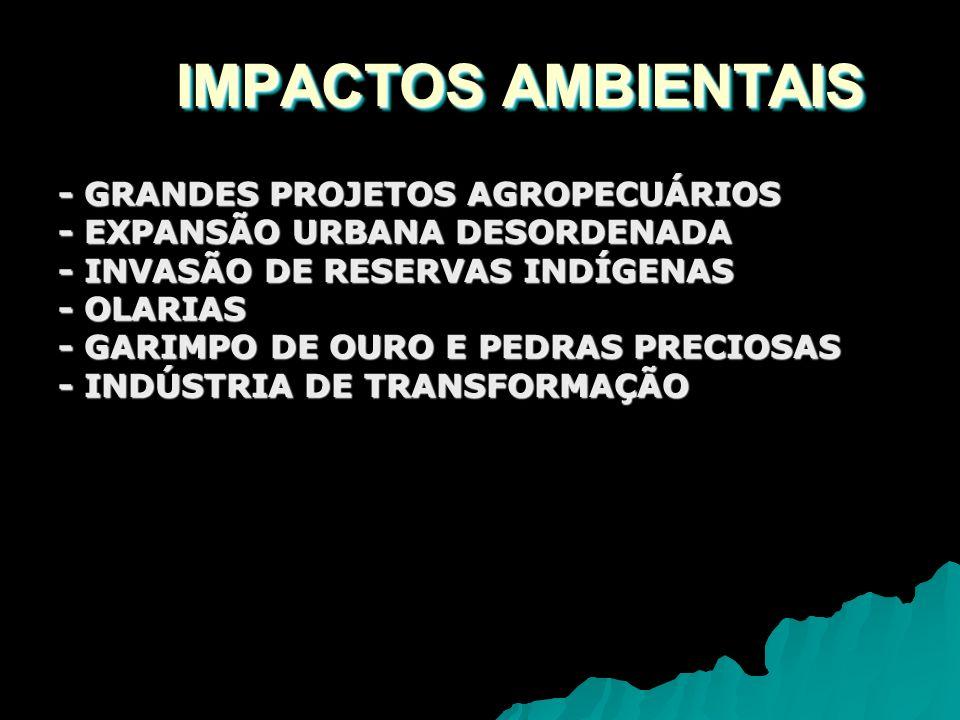 IMPACTOS AMBIENTAIS - GRANDES PROJETOS AGROPECUÁRIOS
