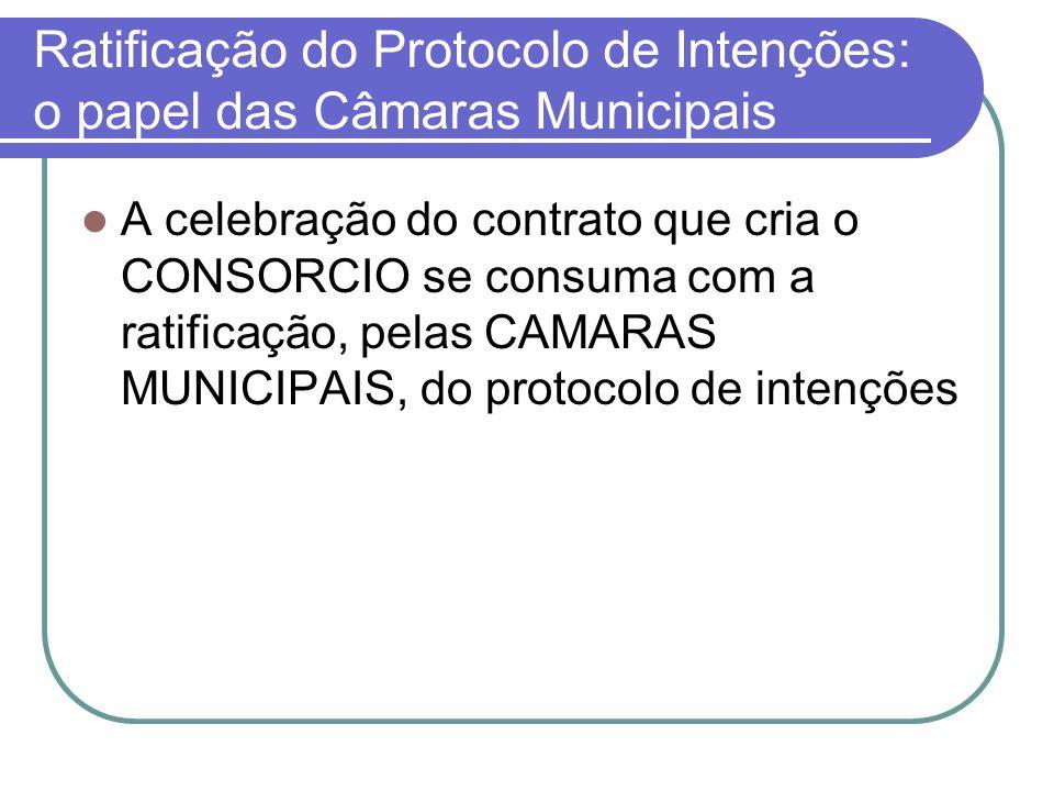 Ratificação do Protocolo de Intenções: o papel das Câmaras Municipais