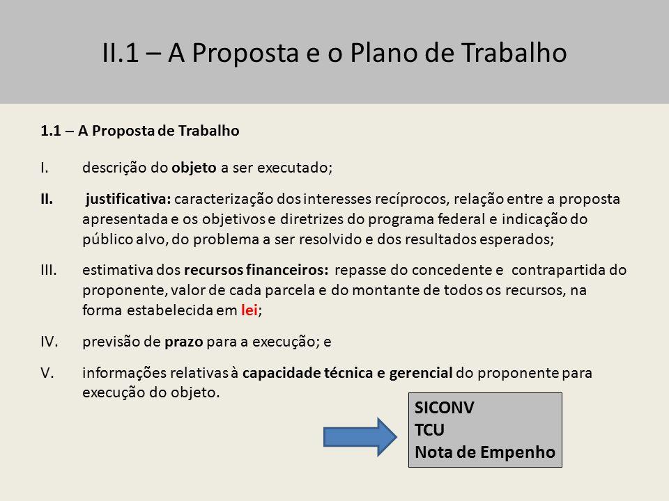 II.1 – A Proposta e o Plano de Trabalho