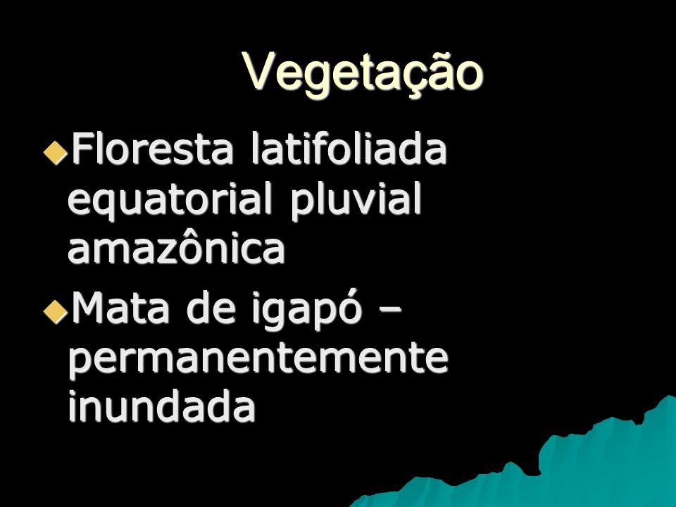 Vegetação Floresta latifoliada equatorial pluvial amazônica