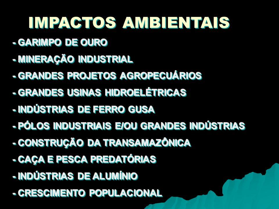 IMPACTOS AMBIENTAIS - GARIMPO DE OURO - MINERAÇÃO INDUSTRIAL