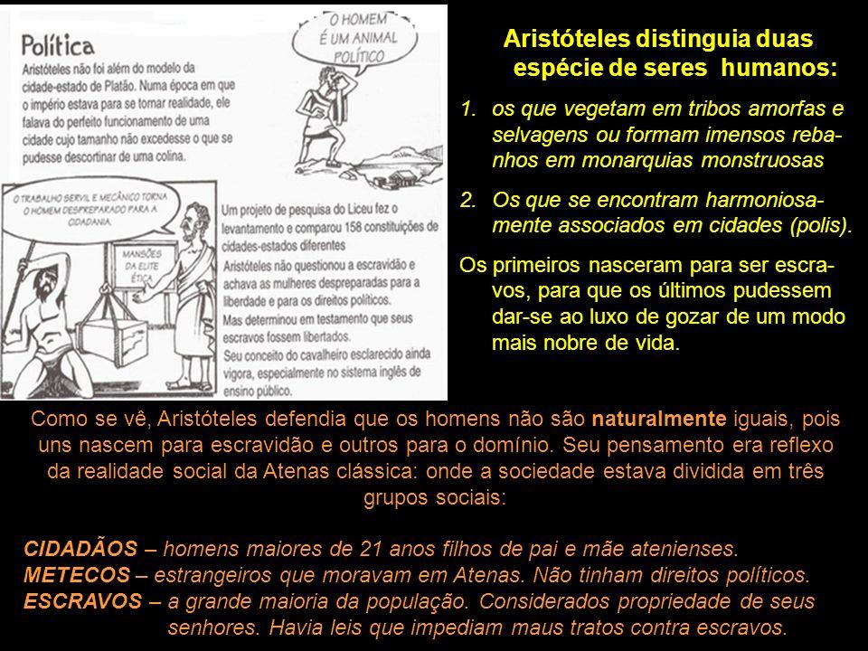 Aristóteles distinguia duas espécie de seres humanos: