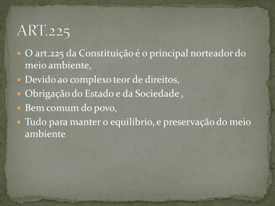 ART.225 O art.225 da Constituição é o principal norteador do meio ambiente, Devido ao complexo teor de direitos,