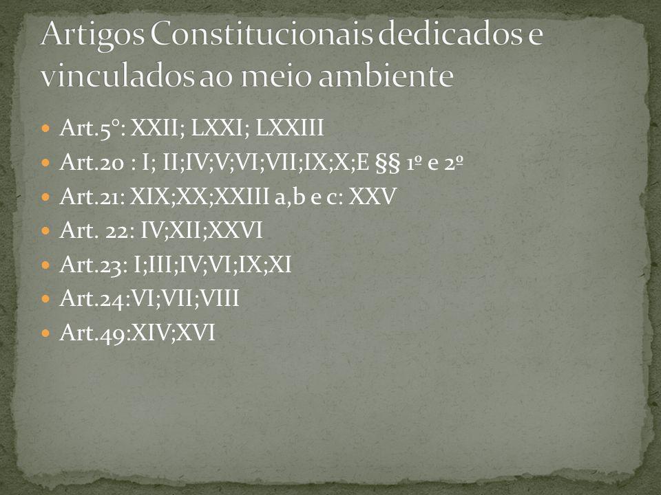 Artigos Constitucionais dedicados e vinculados ao meio ambiente