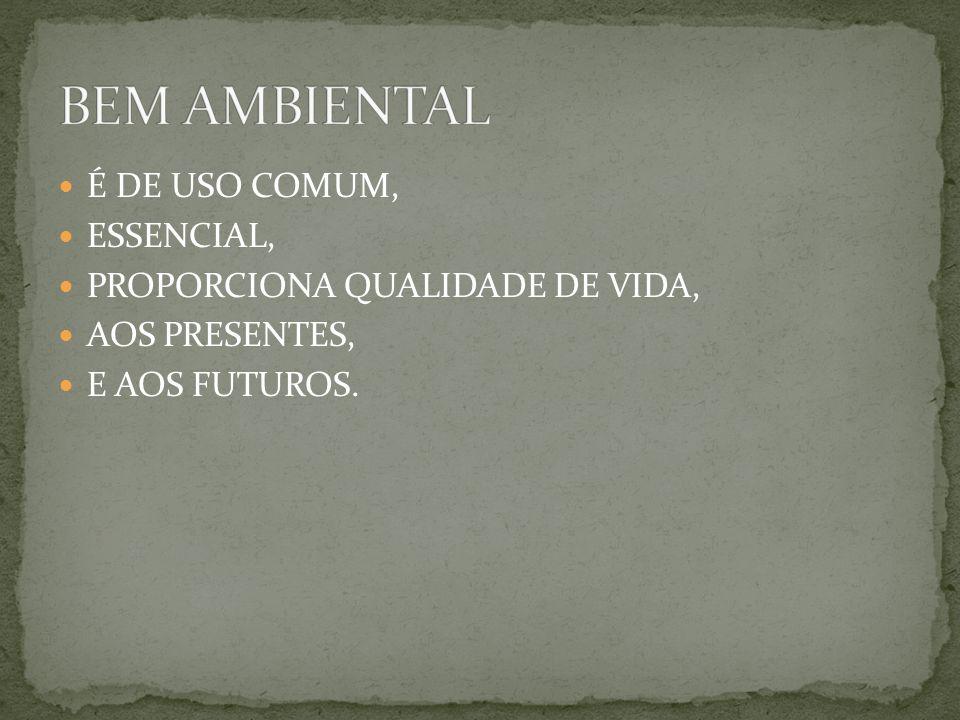 BEM AMBIENTAL É DE USO COMUM, ESSENCIAL,