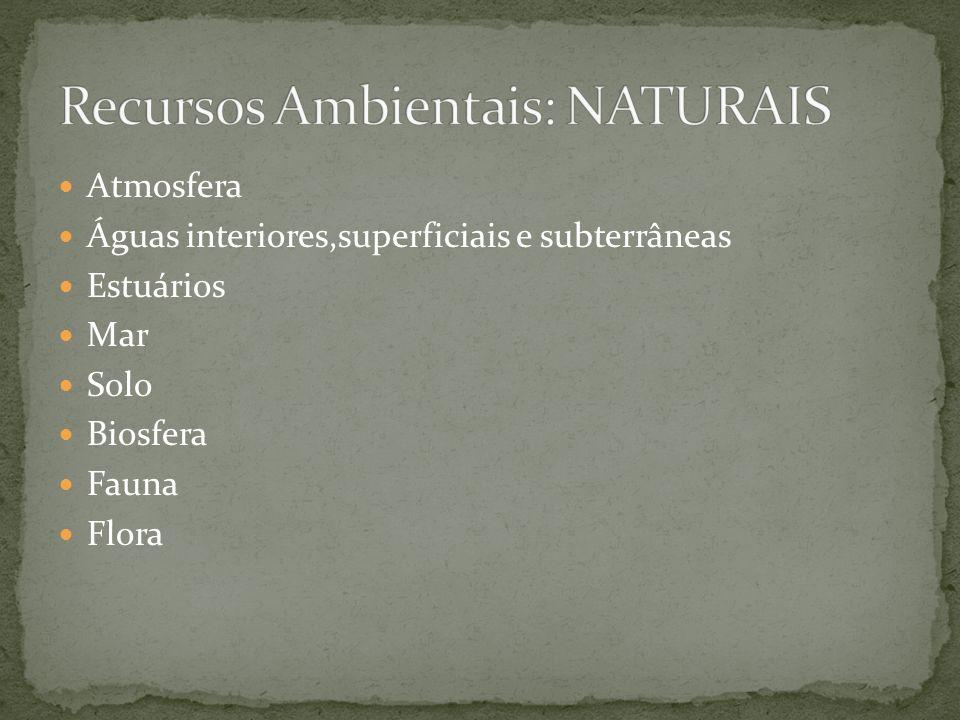Recursos Ambientais: NATURAIS