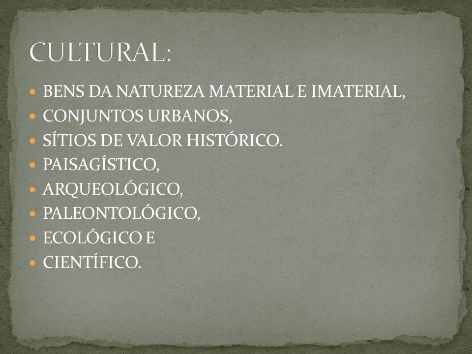 CULTURAL: BENS DA NATUREZA MATERIAL E IMATERIAL, CONJUNTOS URBANOS,
