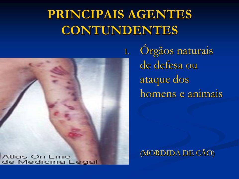 PRINCIPAIS AGENTES CONTUNDENTES