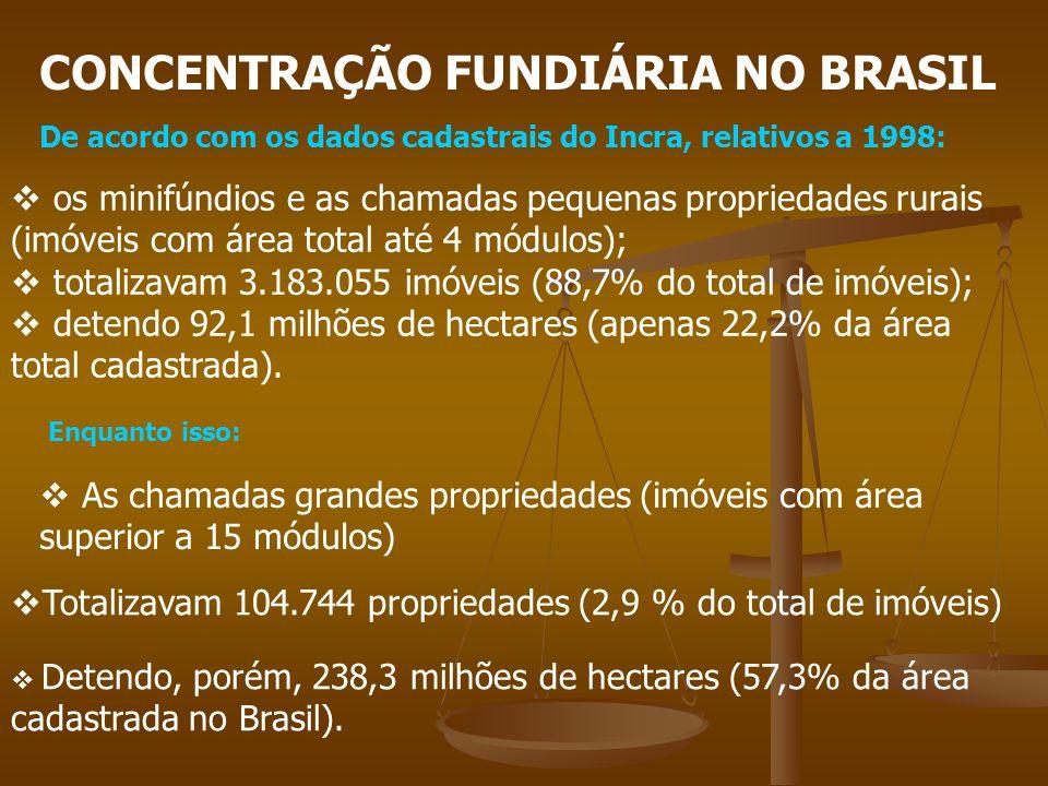 CONCENTRAÇÃO FUNDIÁRIA NO BRASIL