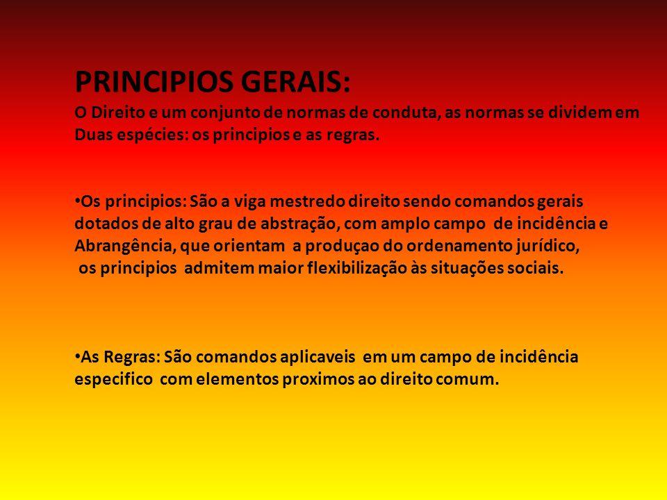 PRINCIPIOS GERAIS: O Direito e um conjunto de normas de conduta, as normas se dividem em. Duas espécies: os principios e as regras.