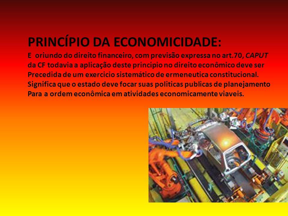 PRINCÍPIO DA ECONOMICIDADE: