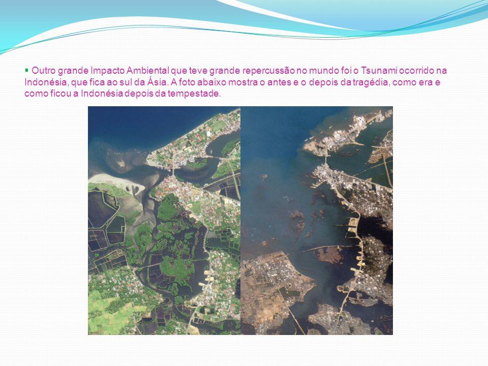 Outro grande Impacto Ambiental que teve grande repercussão no mundo foi o Tsunami ocorrido na Indonésia, que fica ao sul da Ásia.