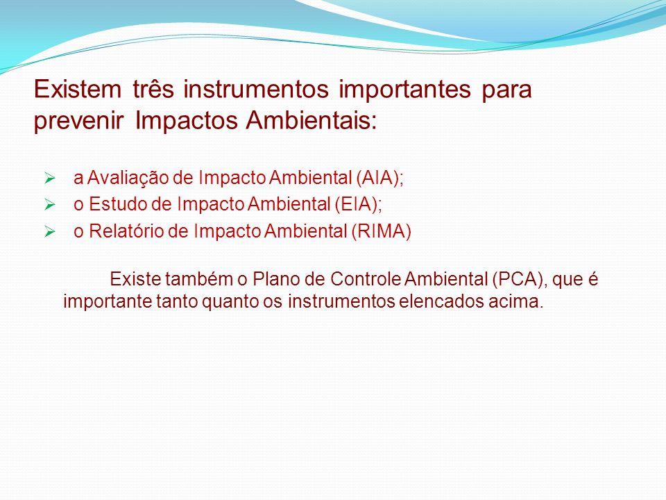 Existem três instrumentos importantes para prevenir Impactos Ambientais: