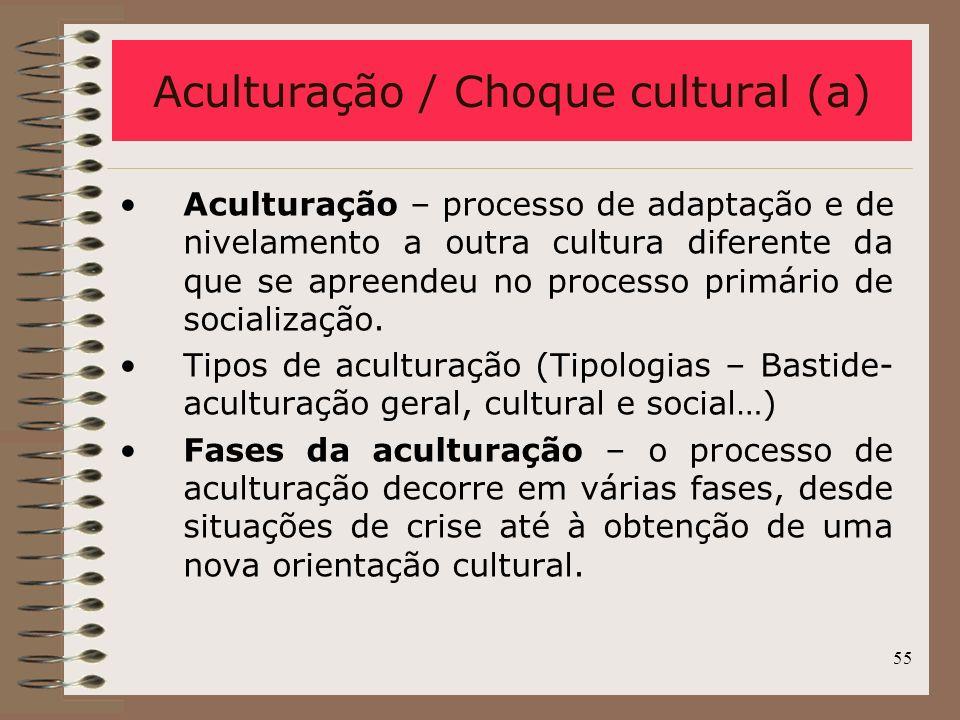Aculturação / Choque cultural (a)