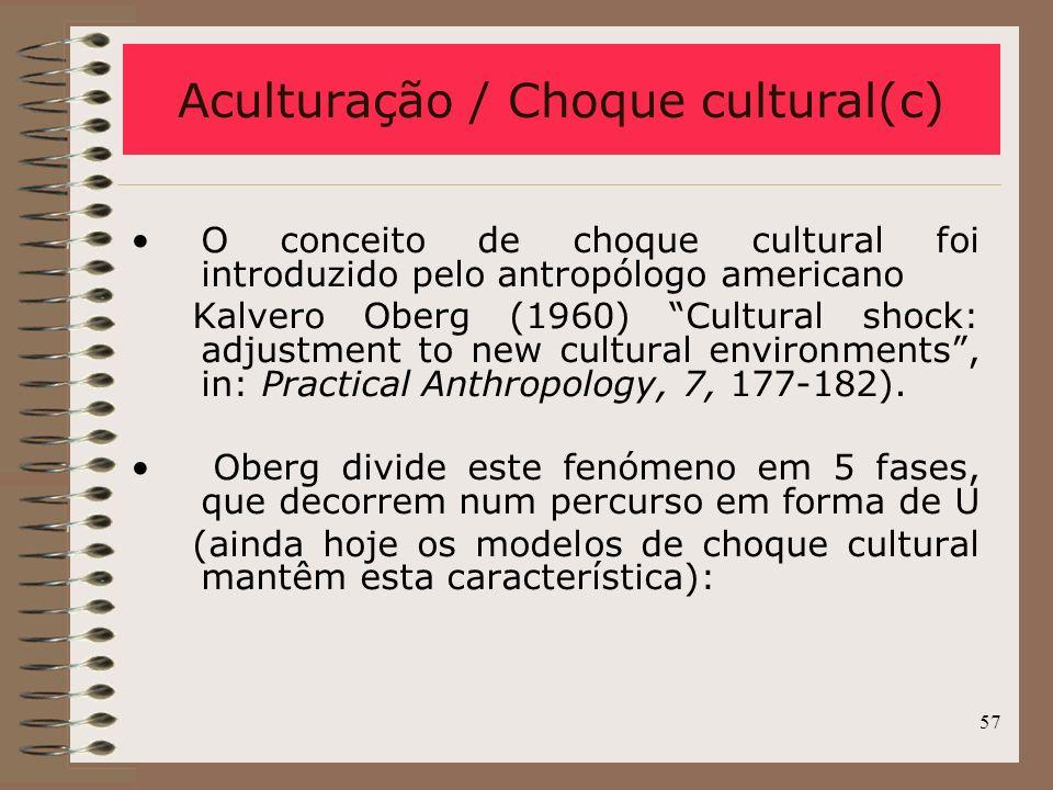 Aculturação / Choque cultural(c)