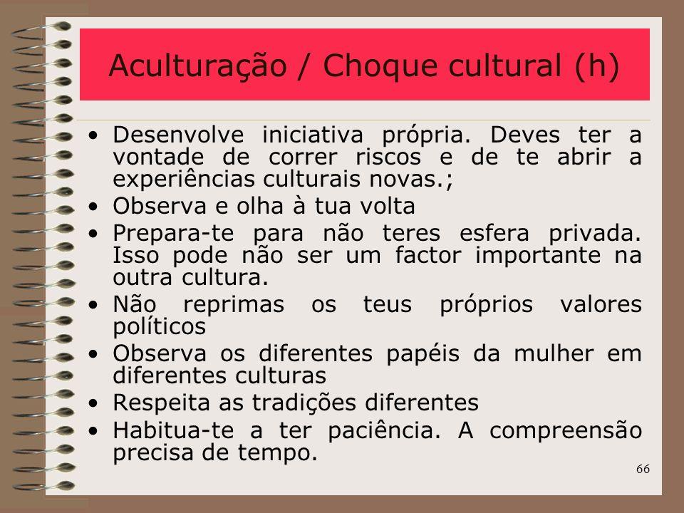 Aculturação / Choque cultural (h)