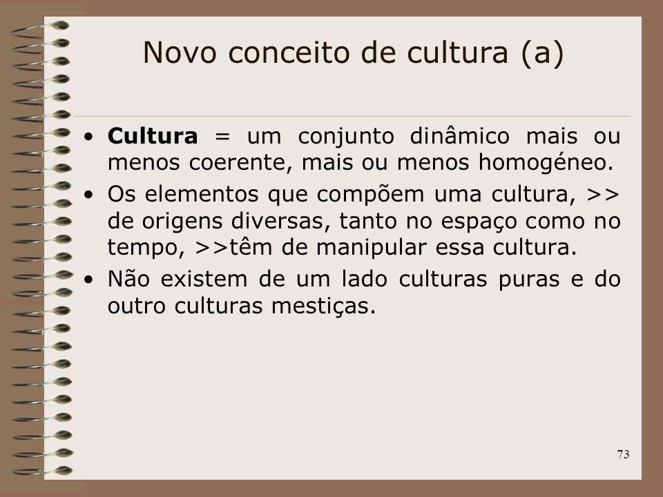 Novo conceito de cultura (a)