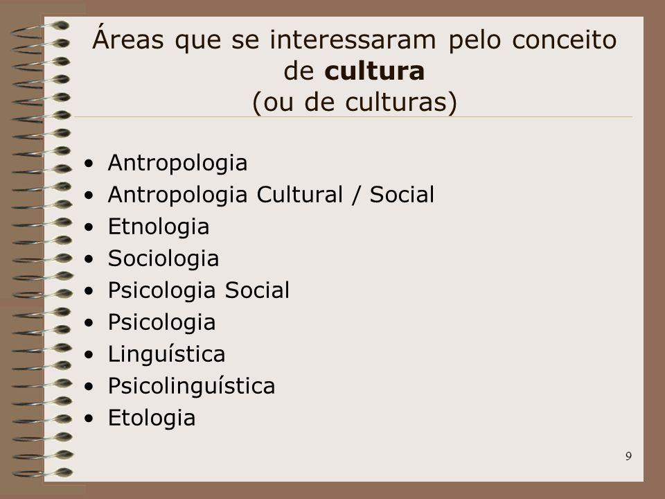 Áreas que se interessaram pelo conceito de cultura (ou de culturas)