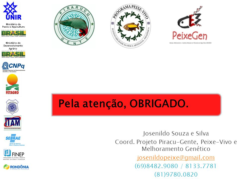Pela atenção, OBRIGADO. Josenildo Souza e Silva