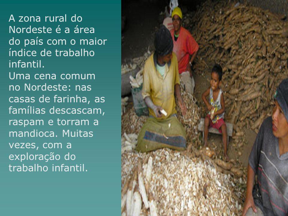 A zona rural do Nordeste é a área do país com o maior índice de trabalho infantil.
