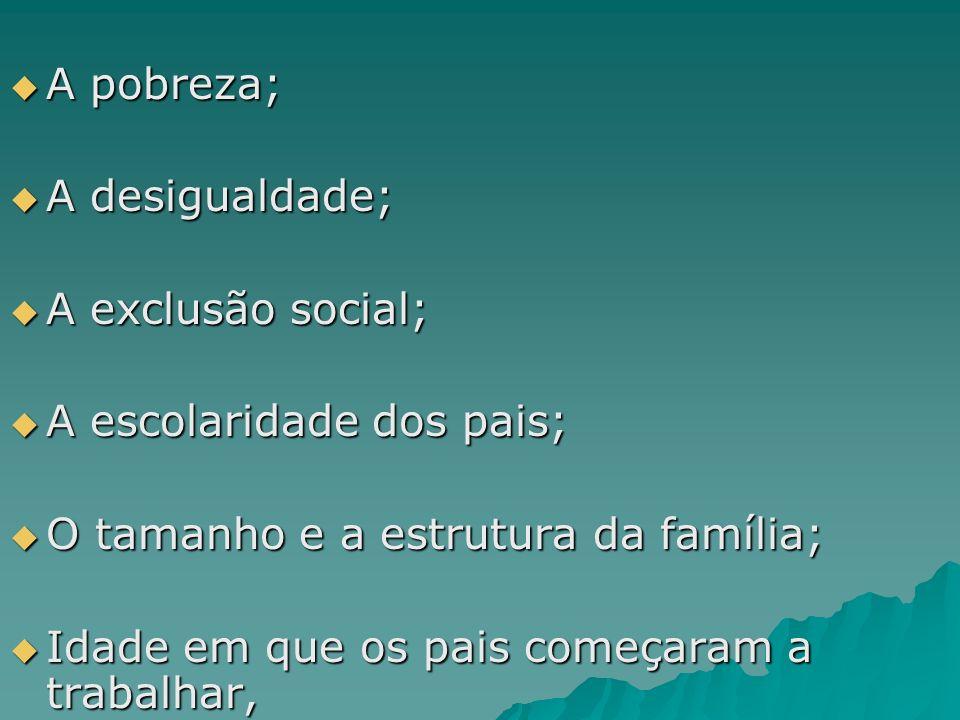 A pobreza; A desigualdade; A exclusão social; A escolaridade dos pais; O tamanho e a estrutura da família;