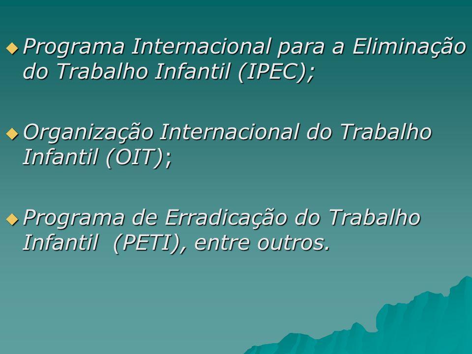 Programa Internacional para a Eliminação do Trabalho Infantil (IPEC);