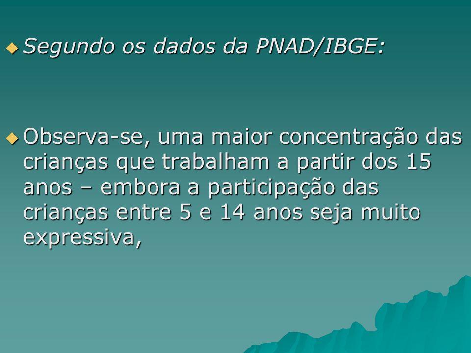 Segundo os dados da PNAD/IBGE: