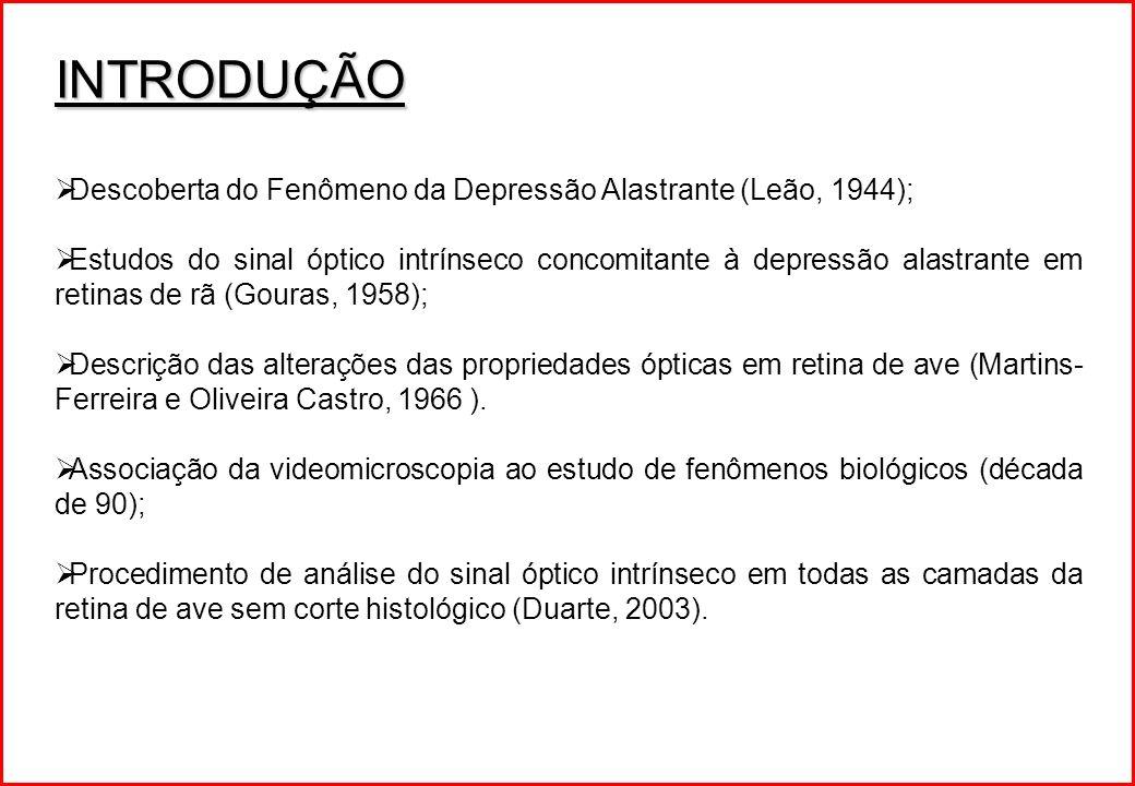 INTRODUÇÃO Descoberta do Fenômeno da Depressão Alastrante (Leão, 1944);