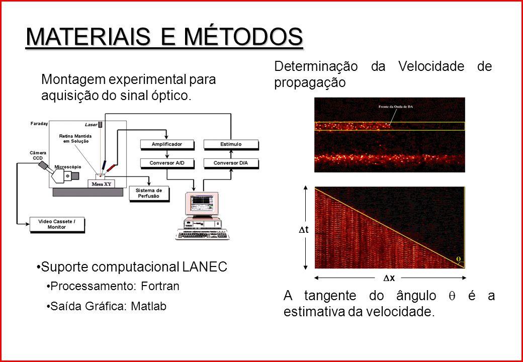 MATERIAIS E MÉTODOS Determinação da Velocidade de propagação