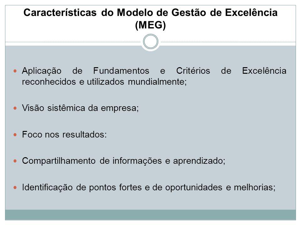 Características do Modelo de Gestão de Excelência (MEG)