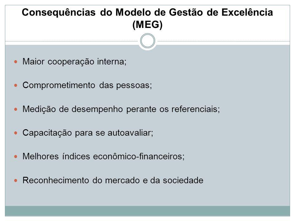 Consequências do Modelo de Gestão de Excelência (MEG)