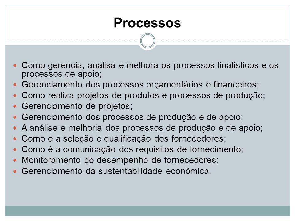 Processos Como gerencia, analisa e melhora os processos finalísticos e os processos de apoio;