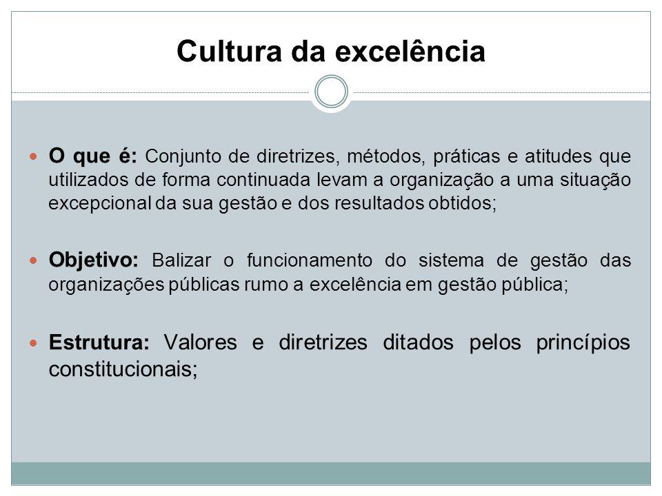 Cultura da excelência