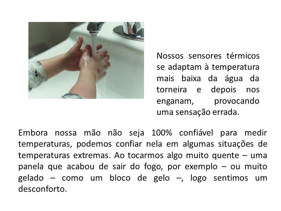 Nossos sensores térmicos se adaptam à temperatura mais baixa da água da torneira e depois nos enganam, provocando uma sensação errada.