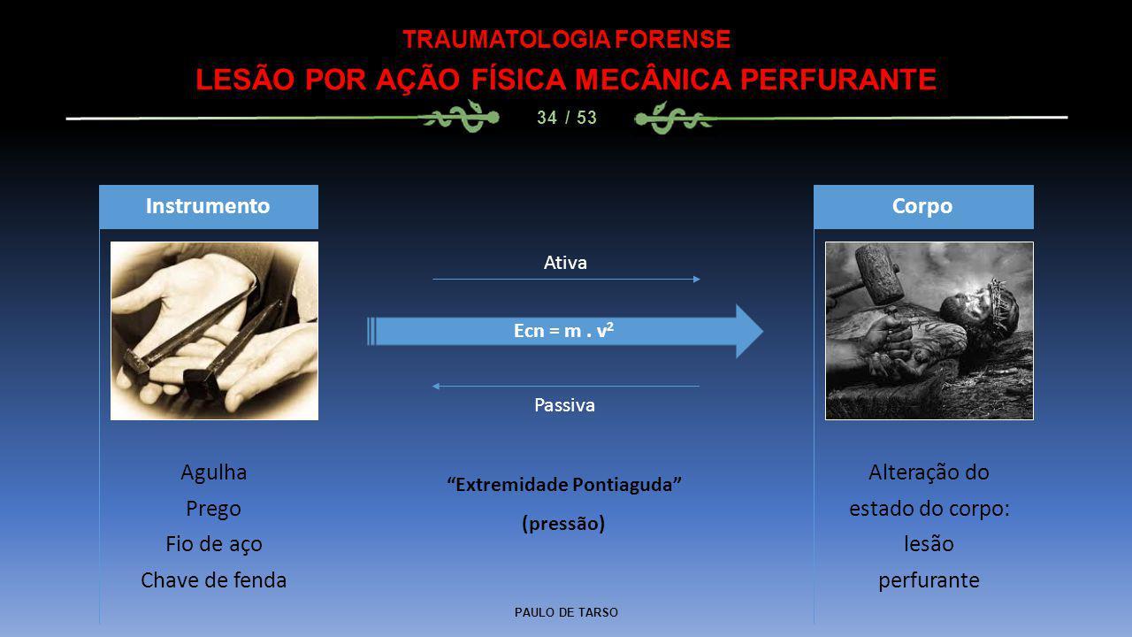 LESÃO POR AÇÃO FÍSICA MECÂNICA PERFURANTE