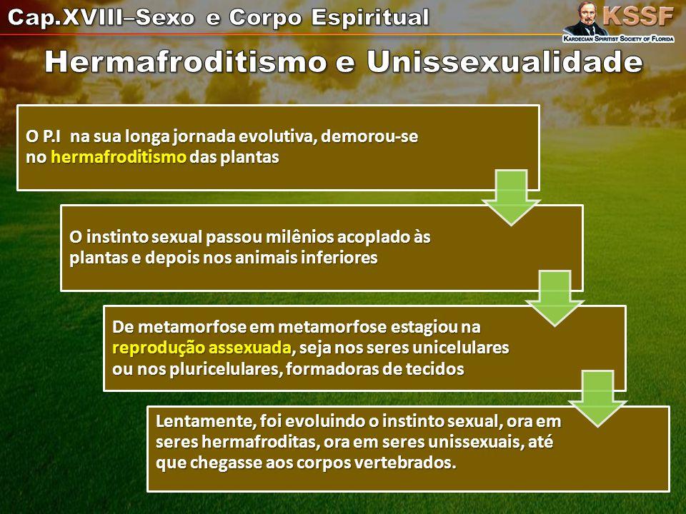 Hermafroditismo e Unissexualidade