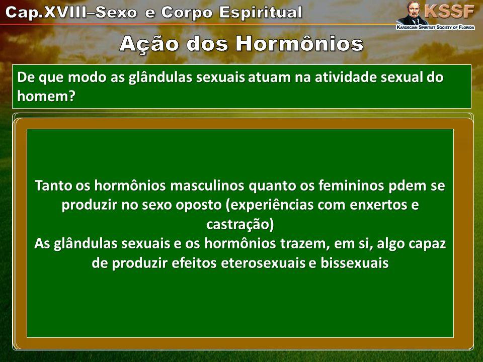 ( testículos- androgênicos).