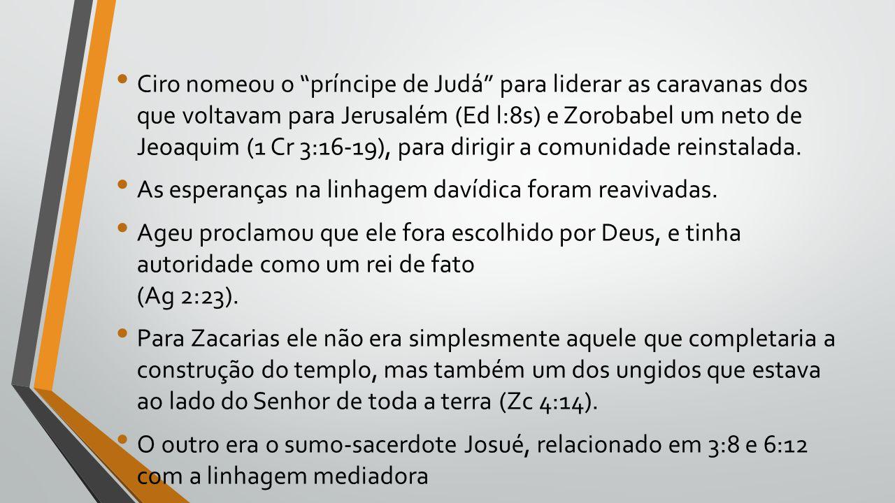 Ciro nomeou o príncipe de Judá para liderar as caravanas dos que voltavam para Jerusalém (Ed l:8s) e Zorobabel um neto de Jeoaquim (1 Cr 3:16-19), para dirigir a comunidade reinstalada.