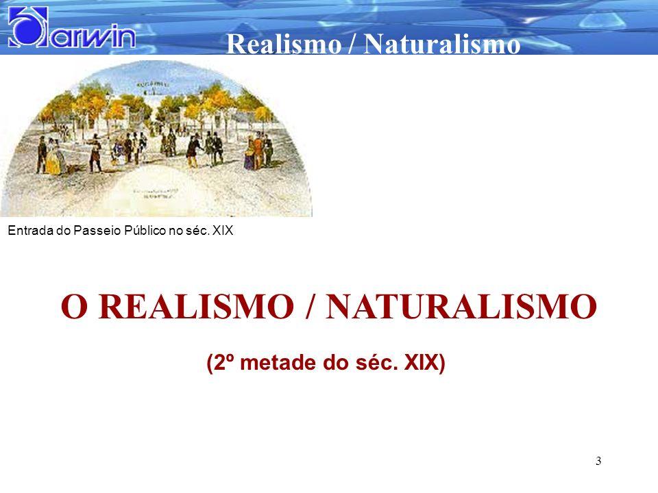 O REALISMO / NATURALISMO