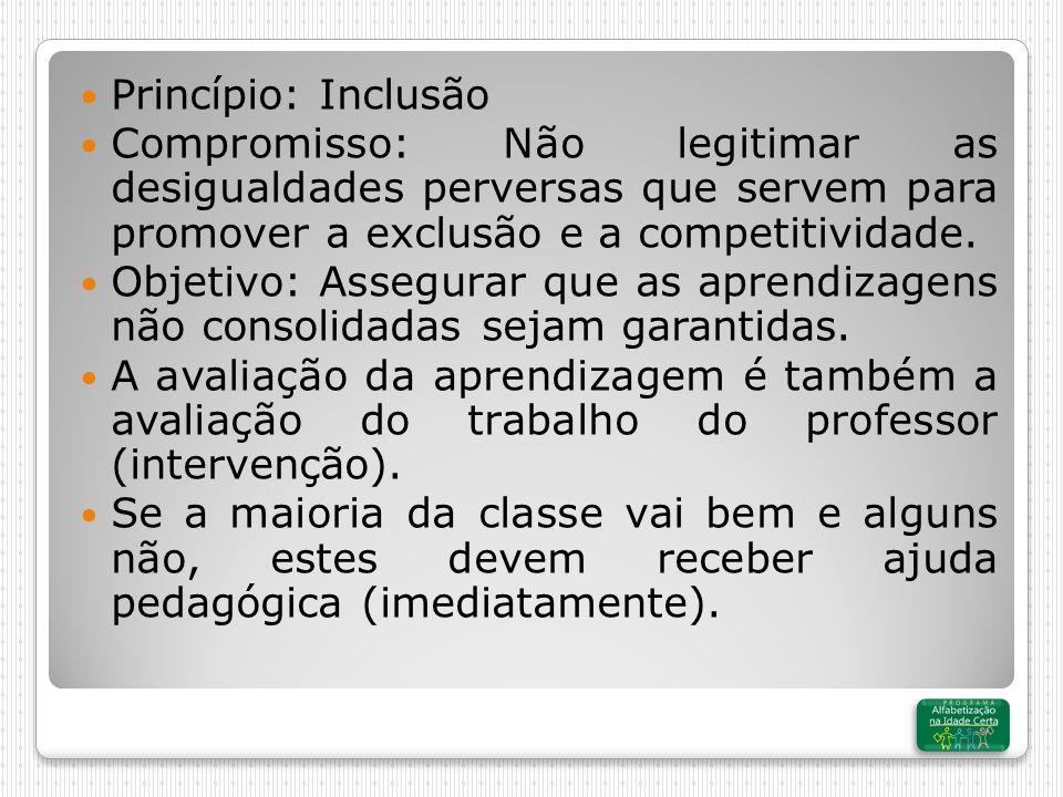 Princípio: Inclusão Compromisso: Não legitimar as desigualdades perversas que servem para promover a exclusão e a competitividade.