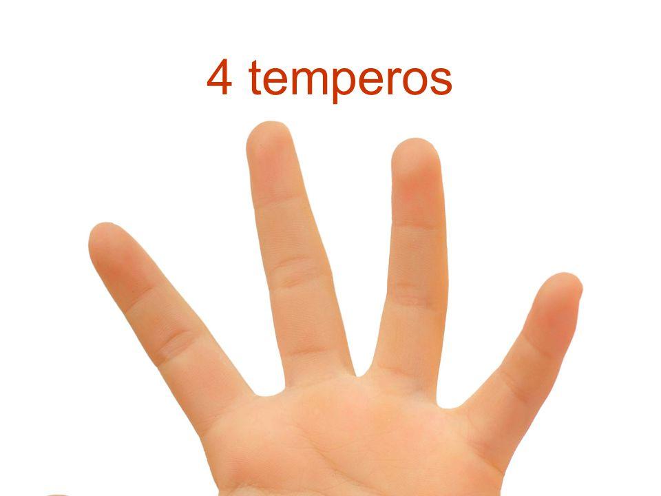 4 temperos