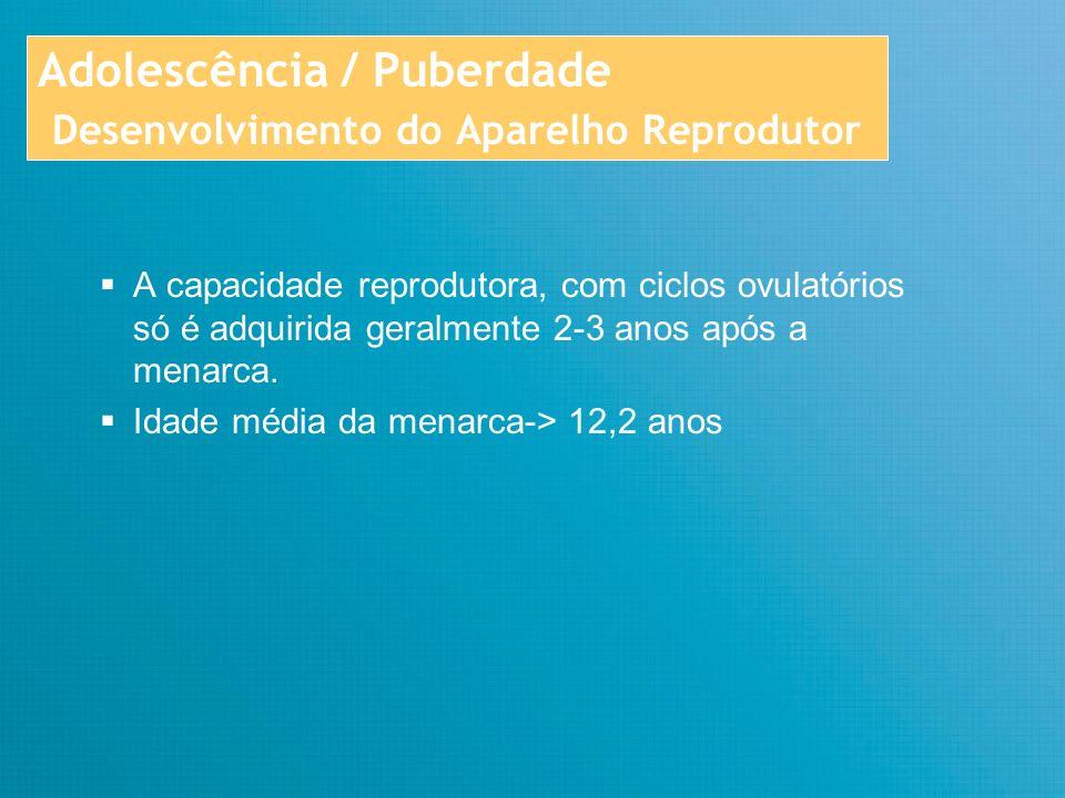 Adolescência / Puberdade Desenvolvimento do Aparelho Reprodutor