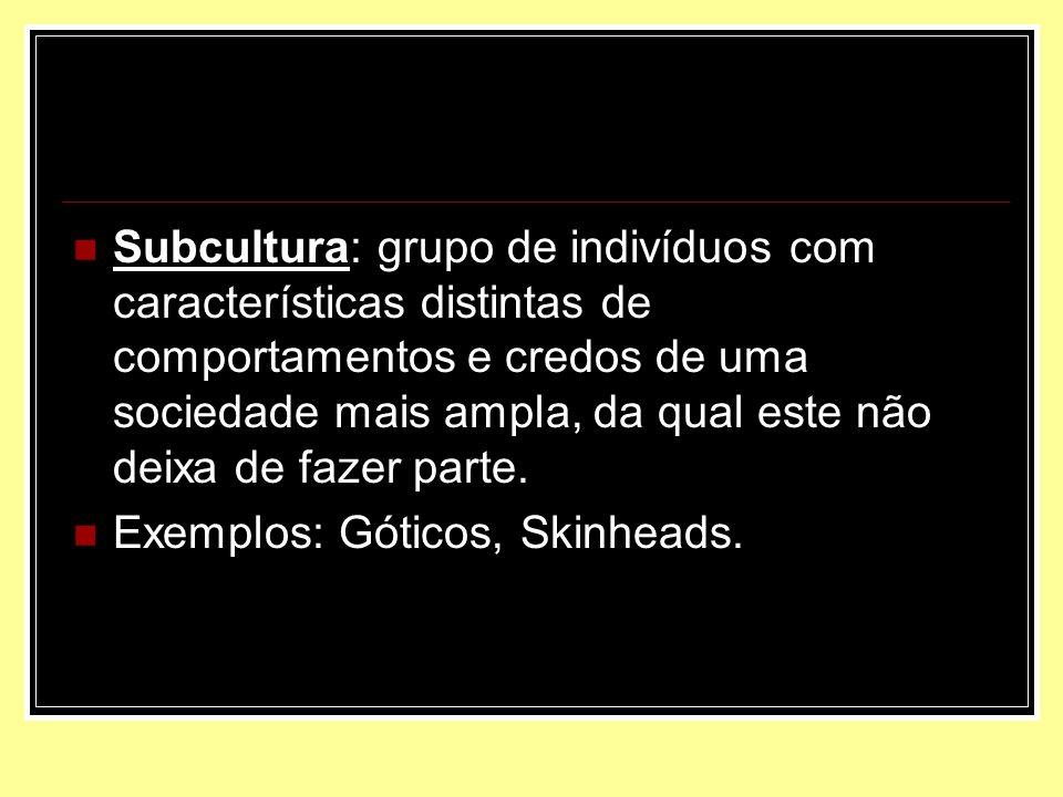 Subcultura: grupo de indivíduos com características distintas de comportamentos e credos de uma sociedade mais ampla, da qual este não deixa de fazer parte.