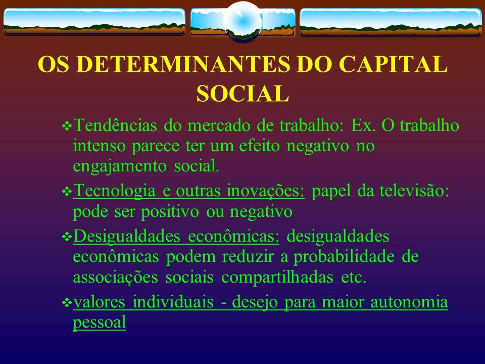 OS DETERMINANTES DO CAPITAL SOCIAL